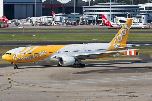 Săn vé máy bay giá rẻ Scoot Air dễ dàng như chưa bao giờ